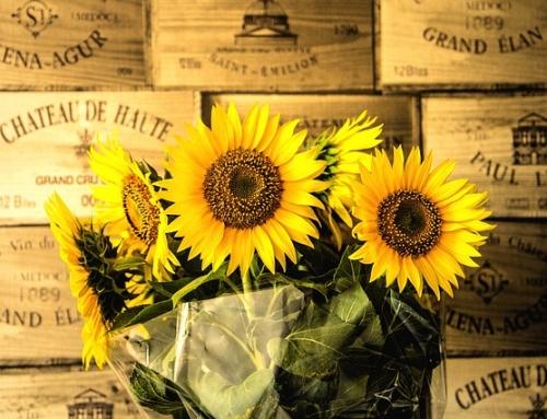 Die Blumentherapie